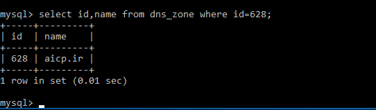 dns5.png